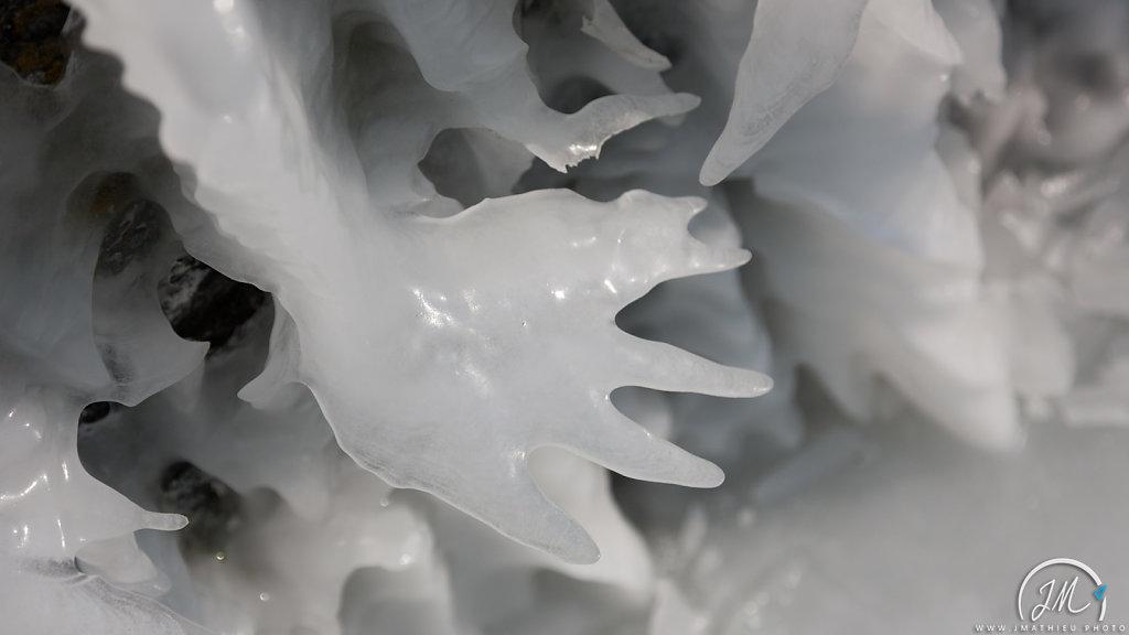 The White Hand